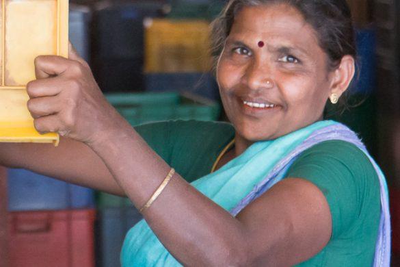 Sri-Lanka J6 :  jardin botanique de kandy et en route vers Nuwara Eliya