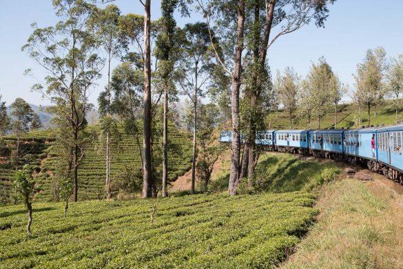 Sri-Lanka J7 :  en route vers Colombo (train jusqu'à Kandy puis voiture)