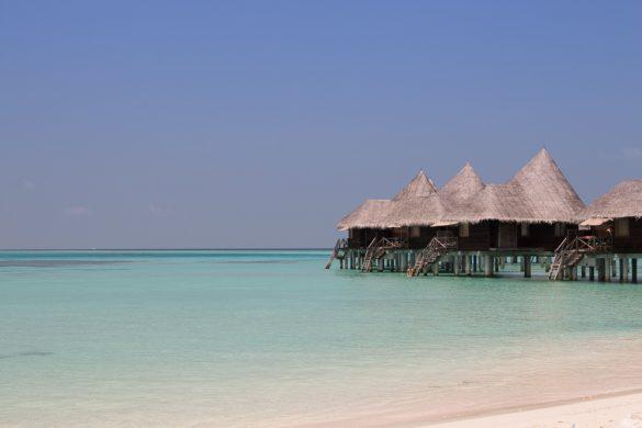 Maldives J8
